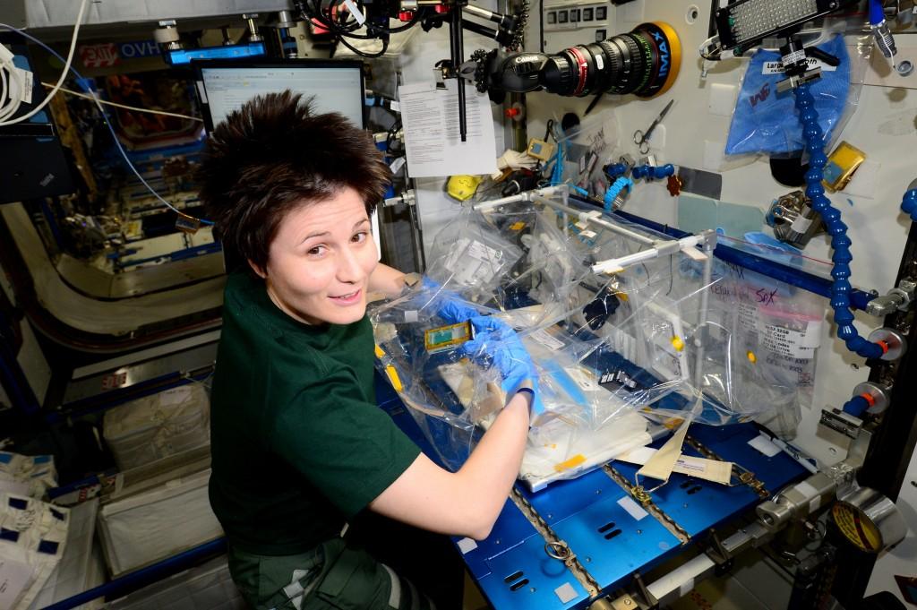 Samantha Cristoforetti lavora all'esperimento Fruit Fly Lab con i moscerini della frutta.