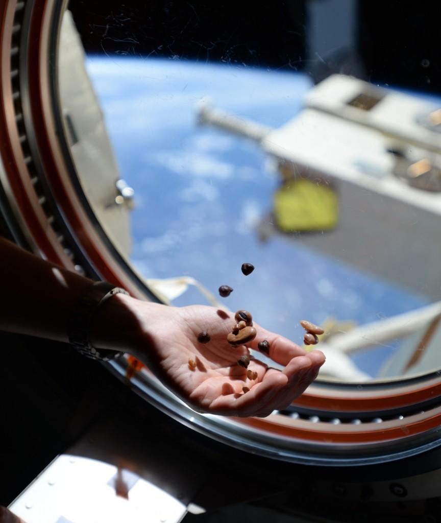 """I legumi della zuppa """"spaziale"""" fotografati da Samantha Cristoforetti. Credits: ESA/NASA"""