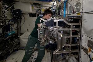 Reinstallando i rotori della centrifuga dopo la manutenzione nel Biolab.  Credits: ESA/NASA